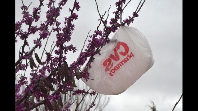 Celebrating the plastic bag ban in California