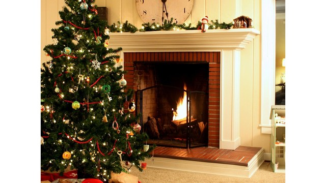 What to do with your tree after Christmas